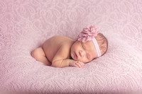 Newborn Photos Baby Portraits Louisville Pictures Photography Photographer